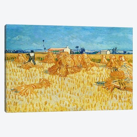 Harvest in Provence Canvas Print #14345} by Vincent van Gogh Canvas Art Print