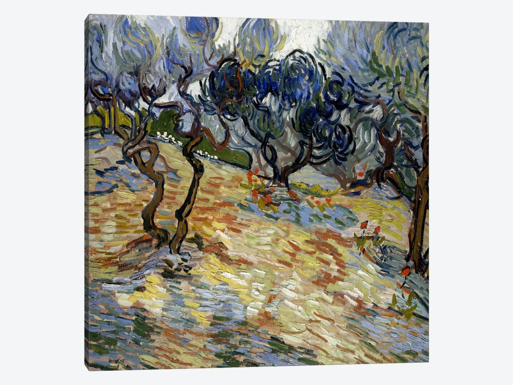 Olive Trees by Vincent van Gogh 1-piece Canvas Wall Art