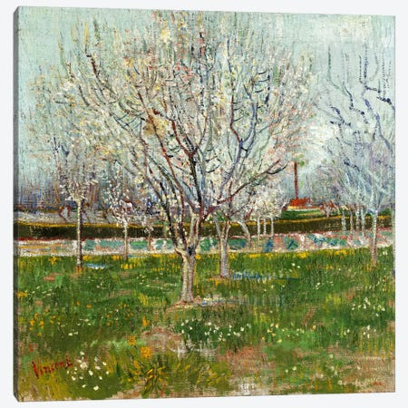 Orchard in Blossom (Plum Trees) 3-Piece Canvas #14372} by Vincent van Gogh Canvas Art Print