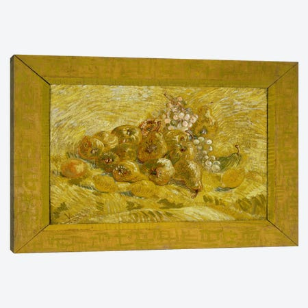 Quinces, Lemons, Pears, and Grapes Canvas Print #14384} by Vincent van Gogh Canvas Print