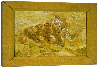 Quinces, Lemons, Pears, and Grapes Canvas Print #14384