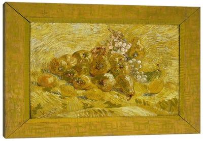 Quinces, Lemons, Pears, and Grapes Canvas Art Print