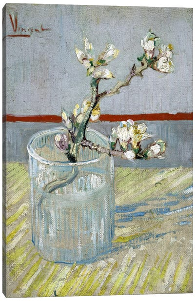 Sprint of Flowering Almond Blossom in a Glass Canvas Print #14392