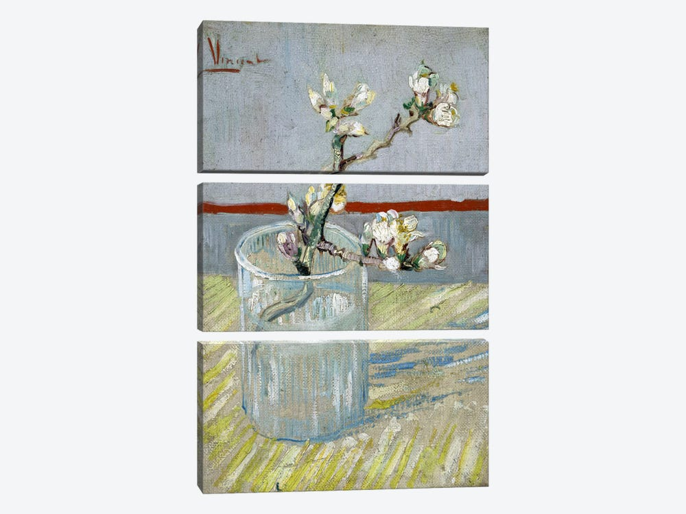 Sprint of Flowering Almond Blossom in a Glass by Vincent van Gogh 3-piece Canvas Art Print
