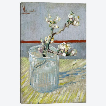 Sprint of Flowering Almond Blossom in a Glass 3-Piece Canvas #14392} by Vincent van Gogh Art Print