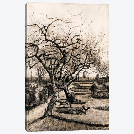 The Parsonage Garden at Nuenen in Winter Canvas Print #14411} by Vincent van Gogh Canvas Art