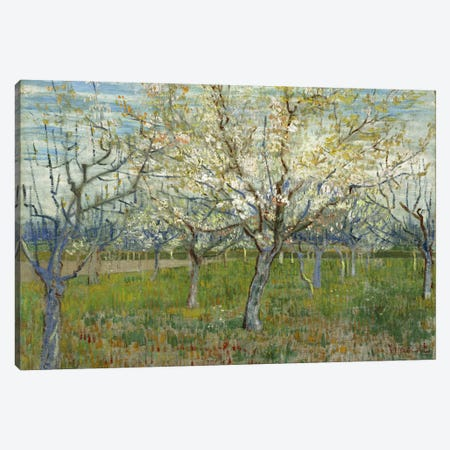 The Pink Orchard 3-Piece Canvas #14412} by Vincent van Gogh Canvas Art
