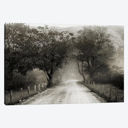Sparks Lane Canvas Print #14656} by Nicholas Bell Photography Canvas Print