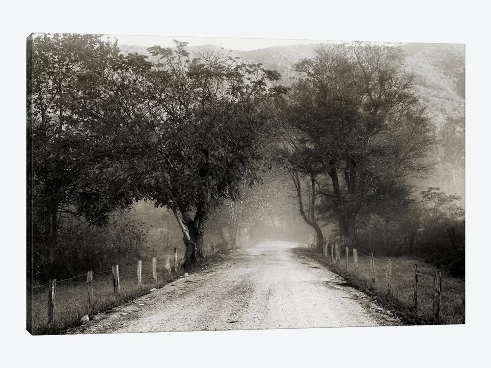 Sparks Lane by Nicholas Bell Photography 1-piece Art Print