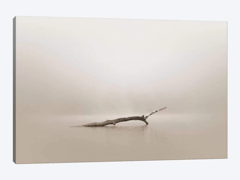 Still by Nicholas Bell Photography 1-piece Canvas Wall Art