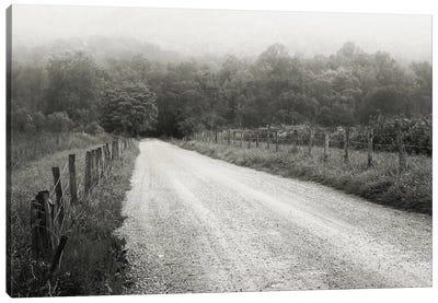 Timeless Drive Canvas Print #14660