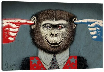 Monkey Canvas Print #14679