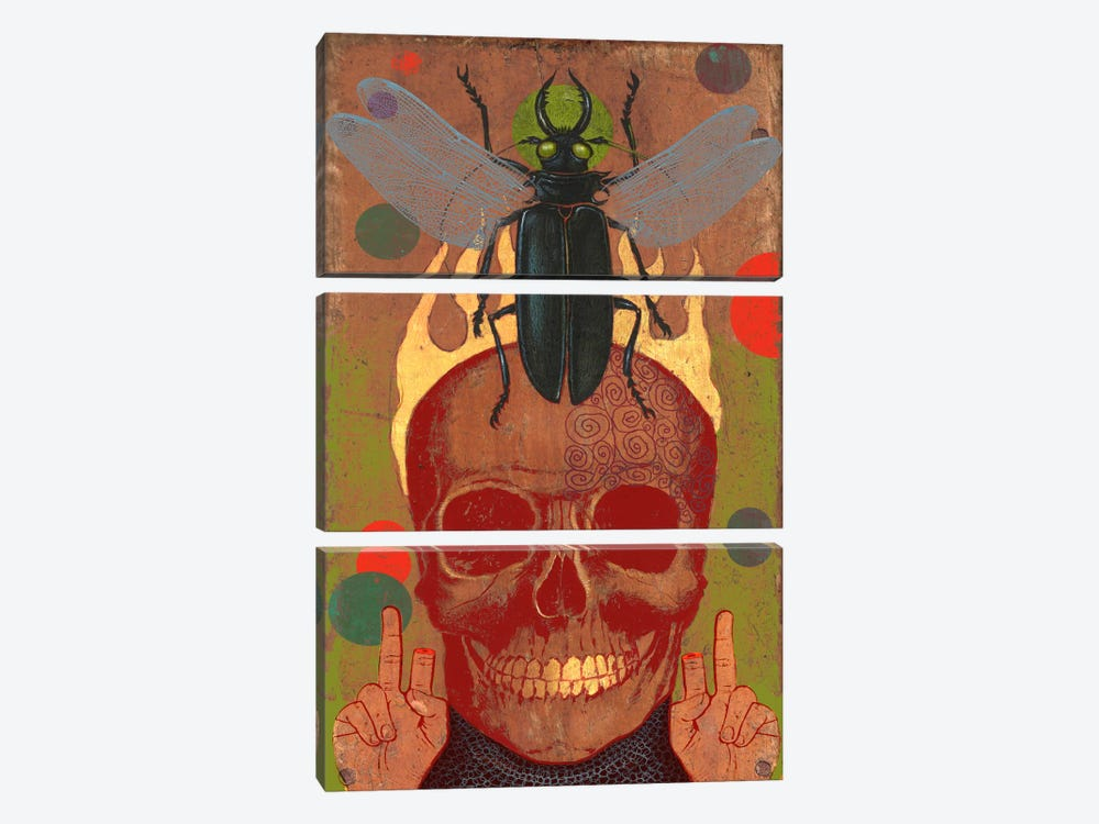 Skull by Anthony Freda 3-piece Canvas Art Print