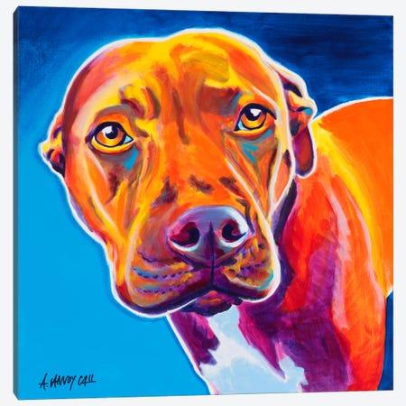 Emma Canvas Print #14690} by DawgArt Canvas Wall Art