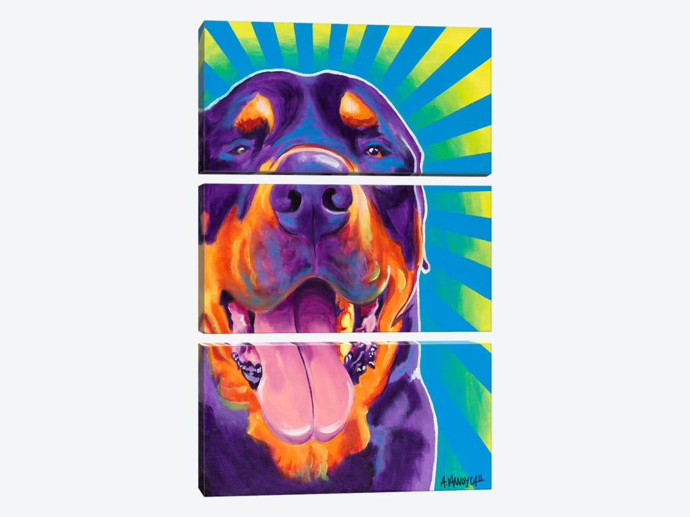 Duncan by DawgArt 3-piece Canvas Artwork