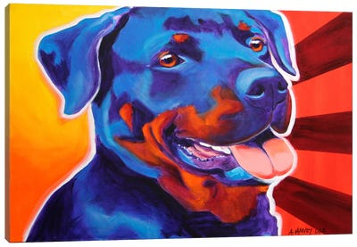 Baloo Canvas Art Print