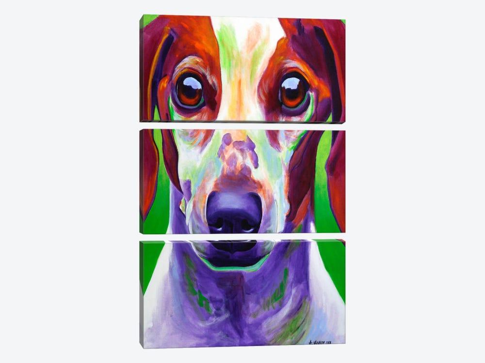 Cooper by DawgArt 3-piece Canvas Art Print