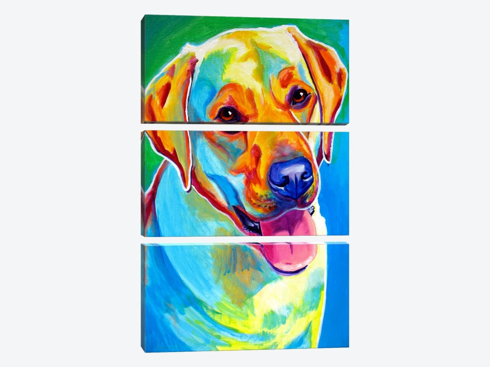 May by DawgArt 3-piece Canvas Artwork