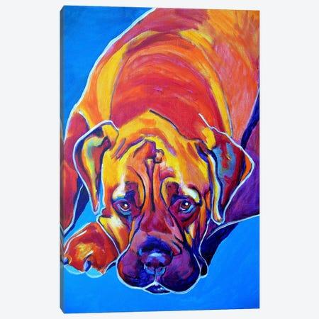 Sahara Canvas Print #14712} by DawgArt Canvas Print