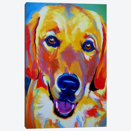 Sheamus Canvas Print #14713} by DawgArt Art Print
