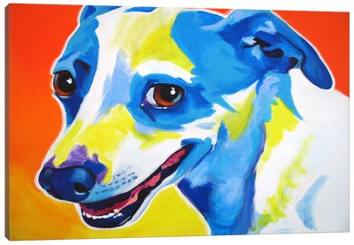 Skippy Canvas Art Print