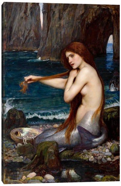 A Mermaid Canvas Art Print