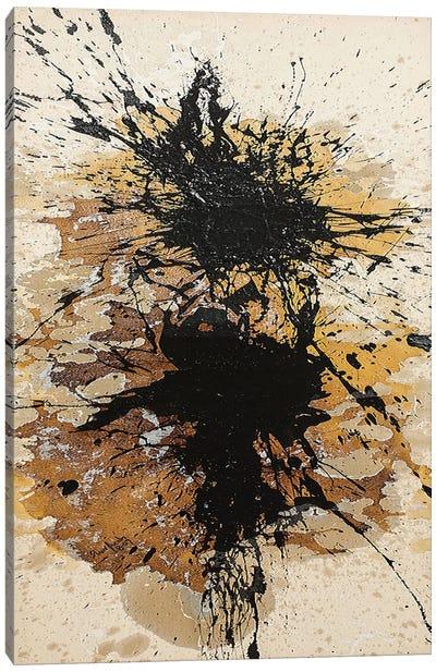 Between the Sunlight Canvas Art Print