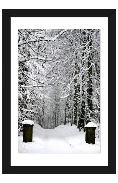 Winter Time Framed Art Print