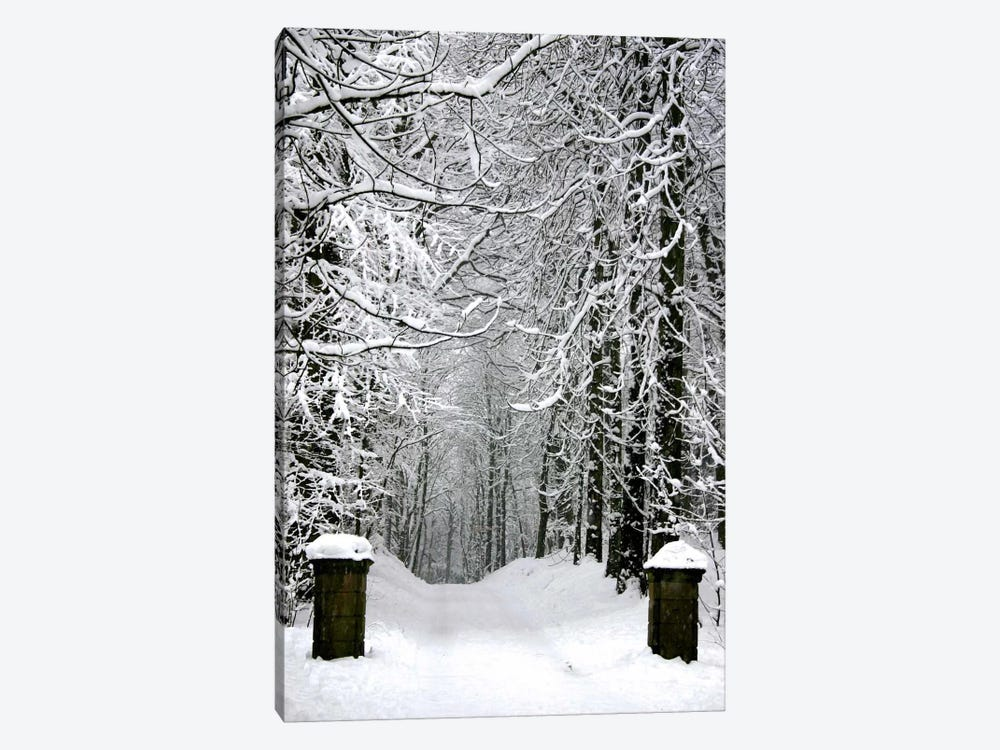 Winter Time 1-piece Art Print