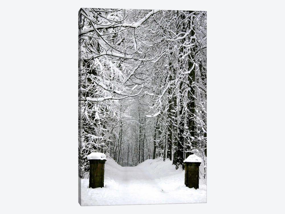 Winter Time by Unknown Artist 1-piece Art Print