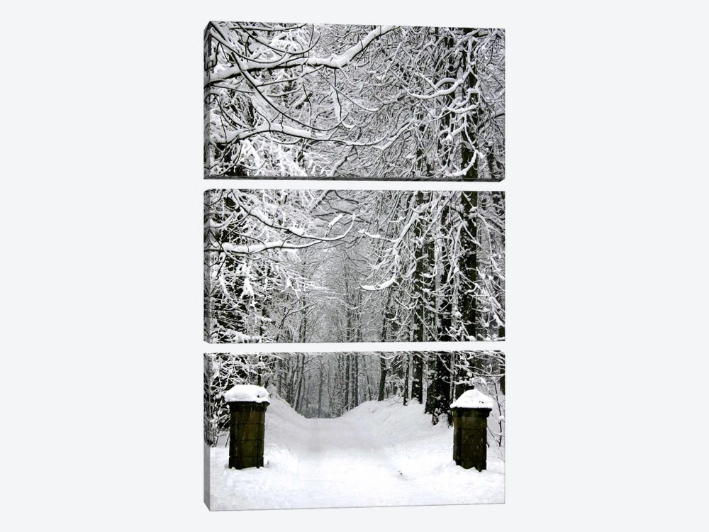 Winter Time by Unknown Artist 3-piece Art Print