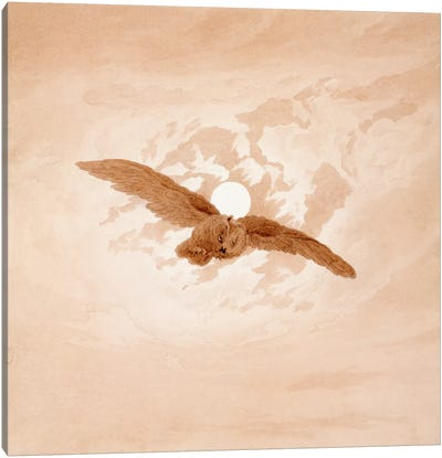 Owl Flying Against a Moonlit Sky Canvas Art Print