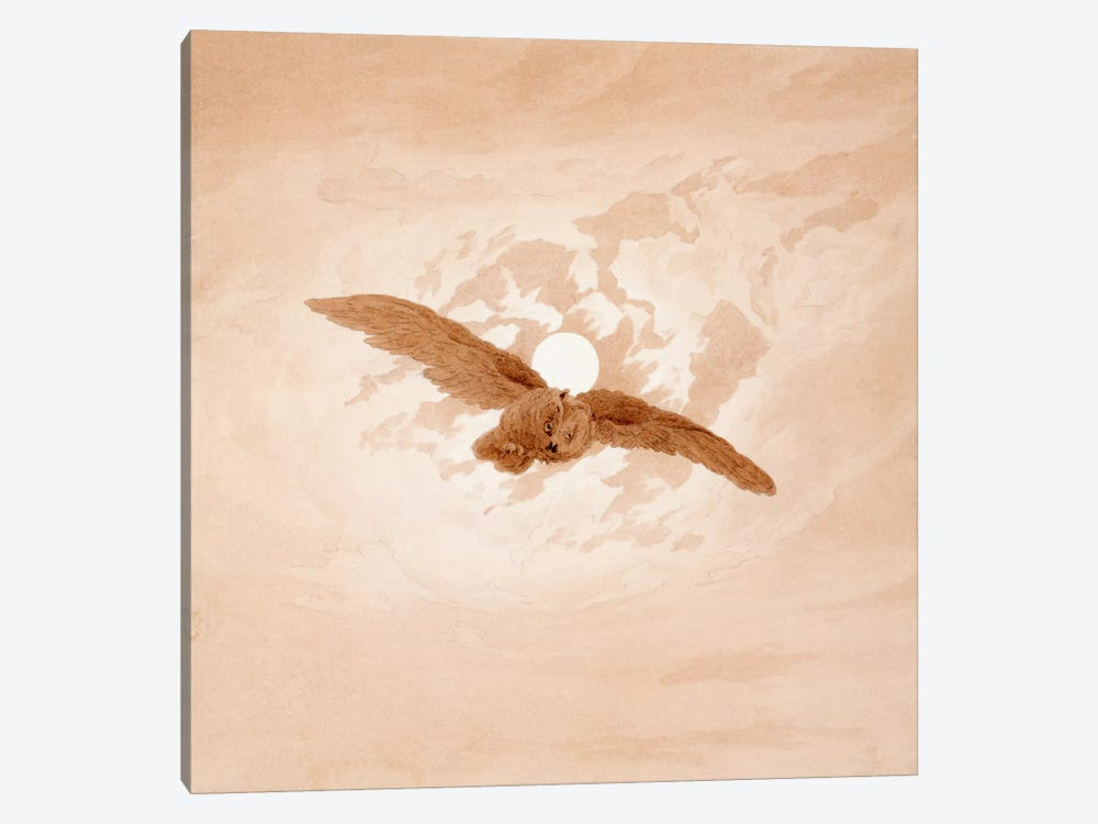 Owl Flying Against a Moonlit Sky 1-piece Canvas Art