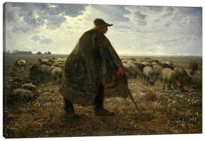 Shepard Tending His Flock Canvas Art Print