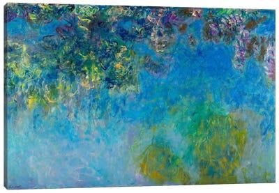 Wisteria Canvas Art Print