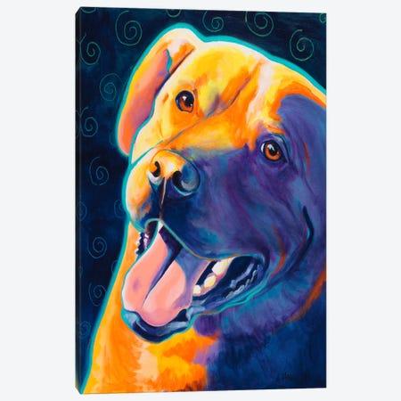 Fiesta Freddie Canvas Print #15287} by DawgArt Canvas Print