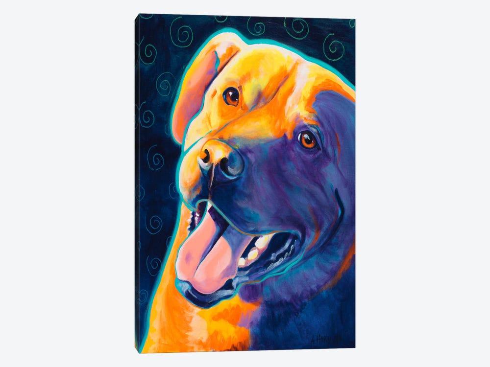 Fiesta Freddie by DawgArt 1-piece Canvas Art