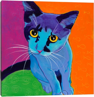 Kitten Blue Canvas Art Print