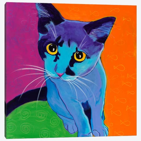 Kitten Blue 3-Piece Canvas #15289} by DawgArt Canvas Artwork