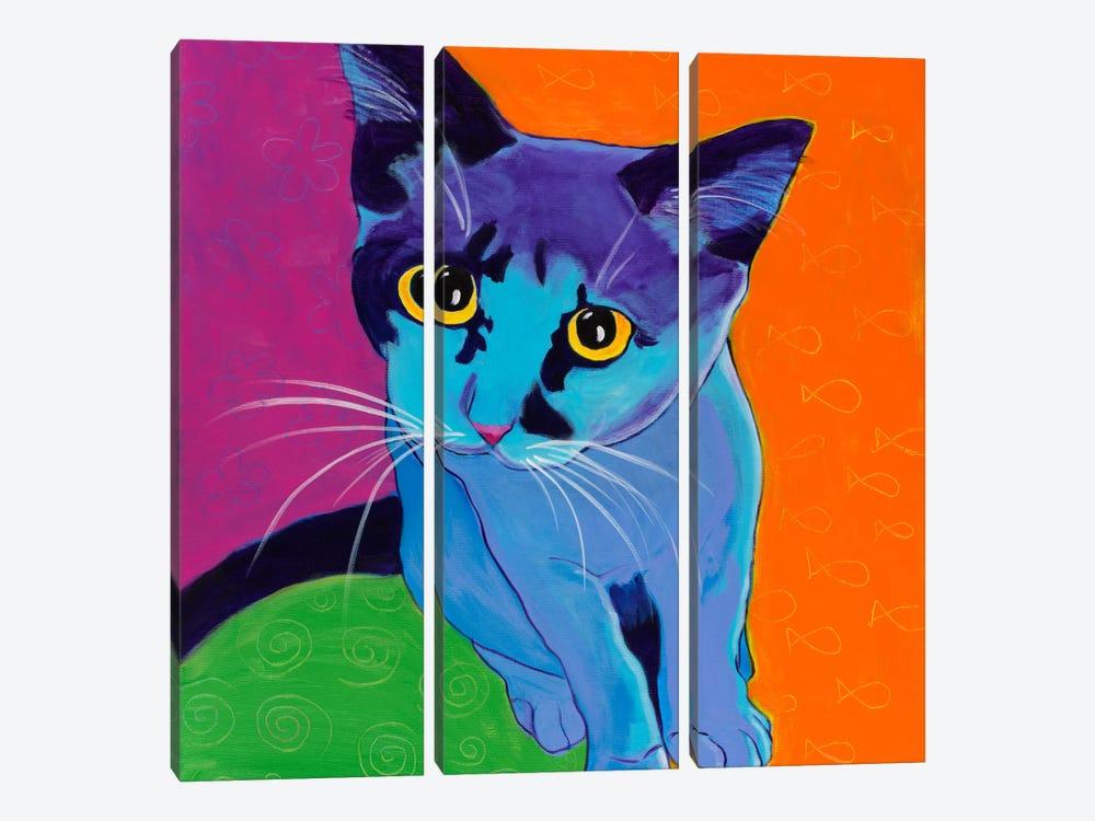 Kitten Blue by DawgArt 3-piece Canvas Art
