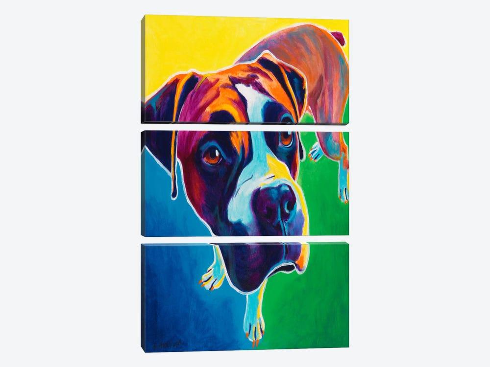 Leo by DawgArt 3-piece Canvas Artwork