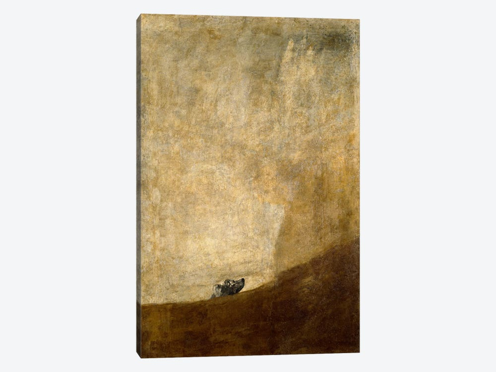 The Dog, 1823 by Francisco Goya 1-piece Canvas Print