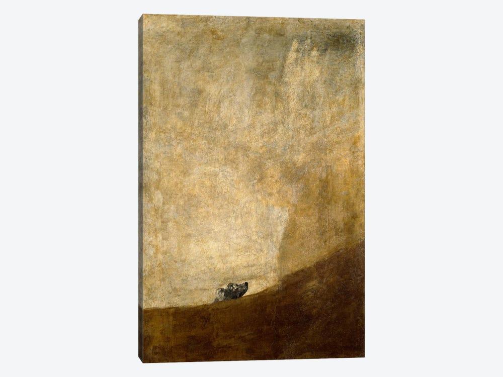 The Dog, 1823 by Francisco Goya 1-piece Canvas Print