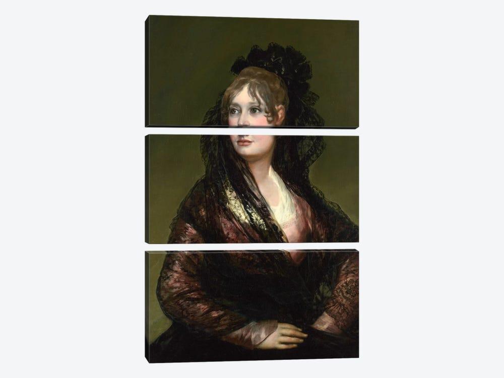 Portrait of Dona Isabel de Porcel by Francisco Goya 3-piece Canvas Print