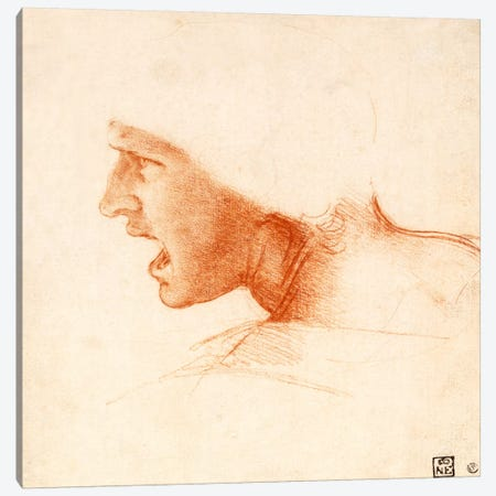 Head of a Warrior (The Red Head) Canvas Print #15395} by Leonardo da Vinci Canvas Print