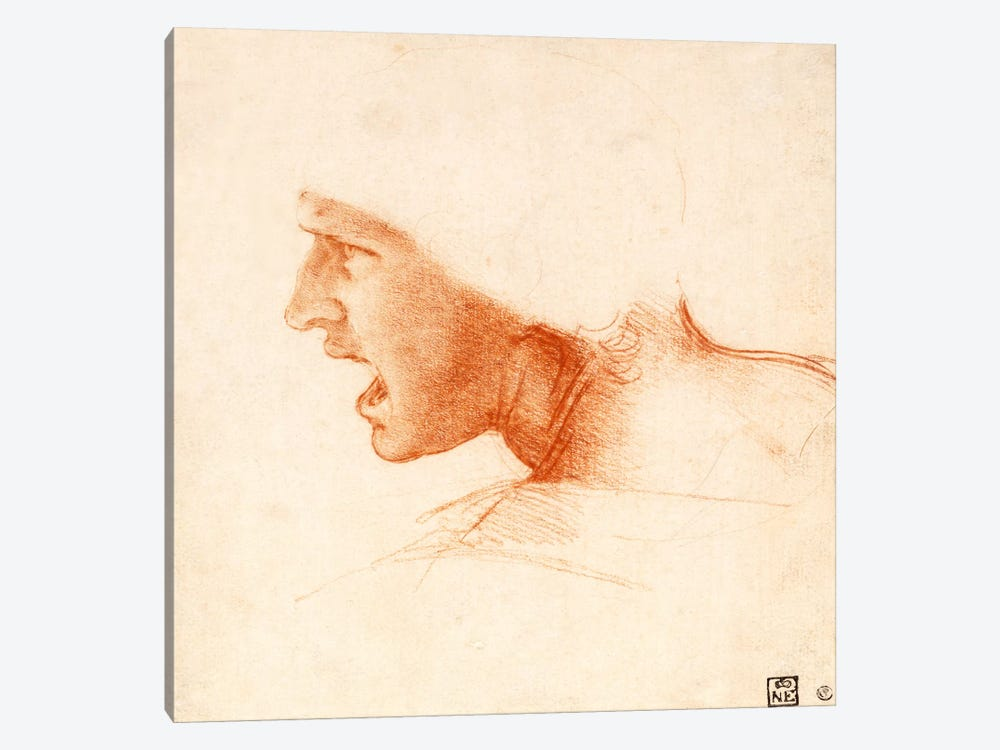 Head of a Warrior (The Red Head) by Leonardo da Vinci 1-piece Canvas Artwork