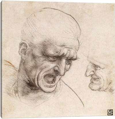 Study of Two Warriors' Heads for the Battle of Anghiari, 1505 Canvas Print #15396