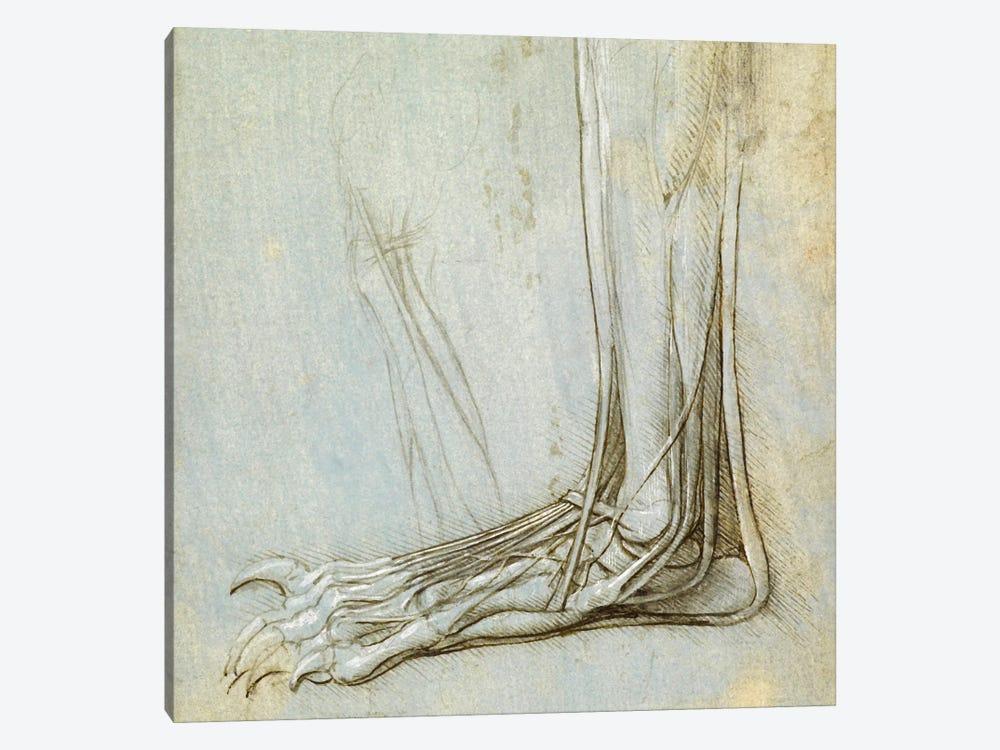 The Anatomy of a Foot, 1485 by Leonardo da Vinci 1-piece Canvas Wall Art