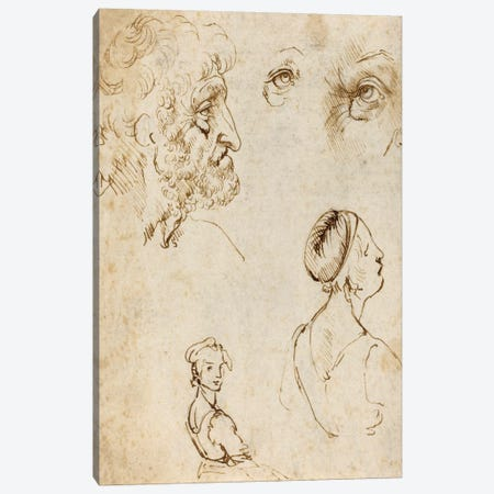 Sheet of Studies (Recto) Canvas Print #15407} by Leonardo da Vinci Canvas Art Print