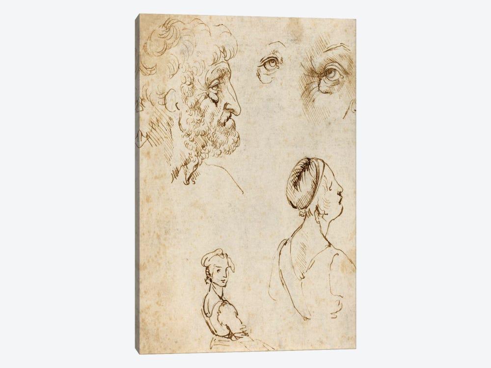 Sheet of Studies (Recto) by Leonardo da Vinci 1-piece Canvas Artwork